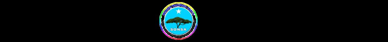 Somalia Non-state Actors Logo