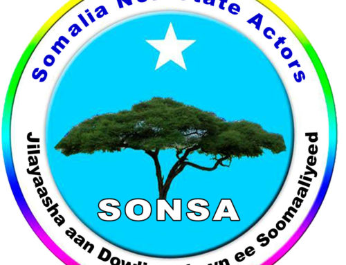 SONSA Update report – July 2019
