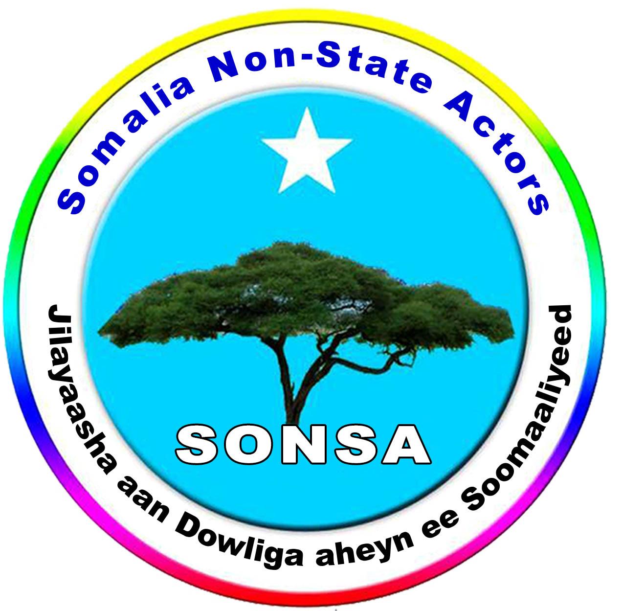 SONSA Update report – July 2019